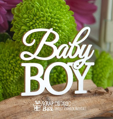 Chipboard Inscription Baby Boy Hi-359